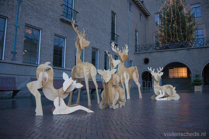 Deer family townhall photo